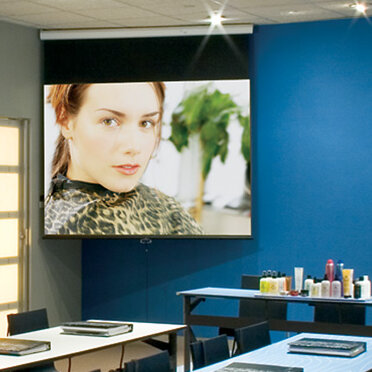 Draper Luma Contrast Radiant Electric Projection Screen with Low Voltage Motor Size/Format: 66