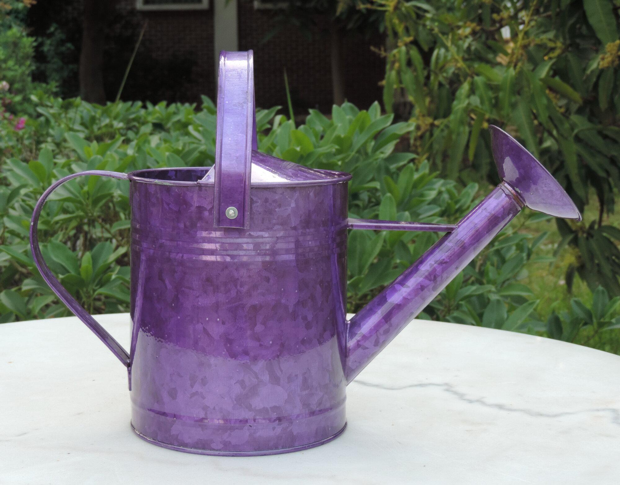 Griffith creek designs 1 gallon metal watering can ebay - Gallon metal watering can ...