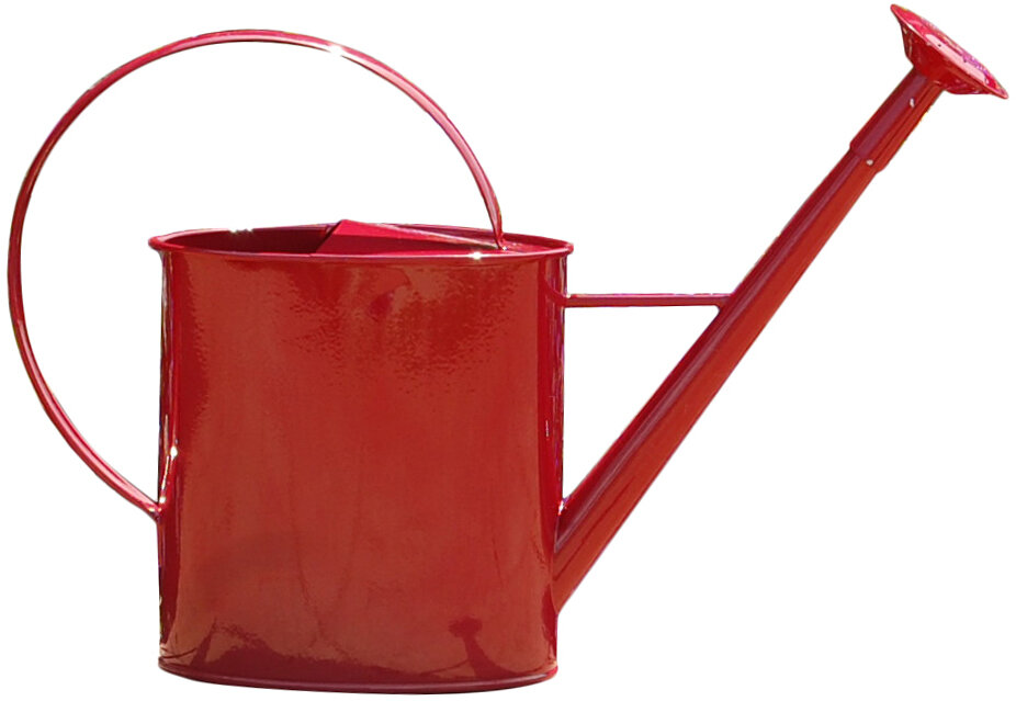 Griffith creek designs metal 1 gallon watering can with long spout ebay - Gallon metal watering can ...