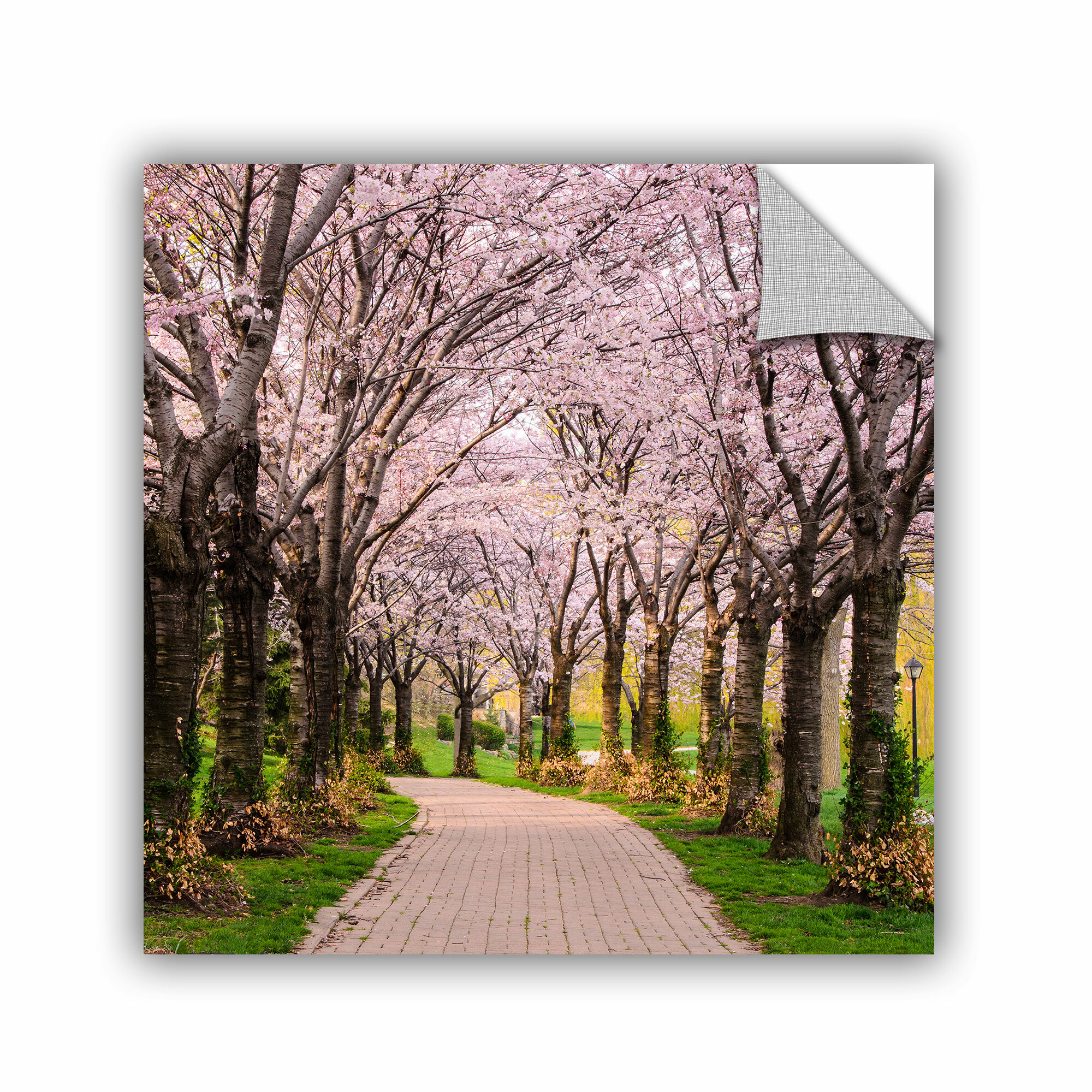 artwall cherry blossom trail wall mural ebay cherry blossom and butterfly wall mural wall stickers