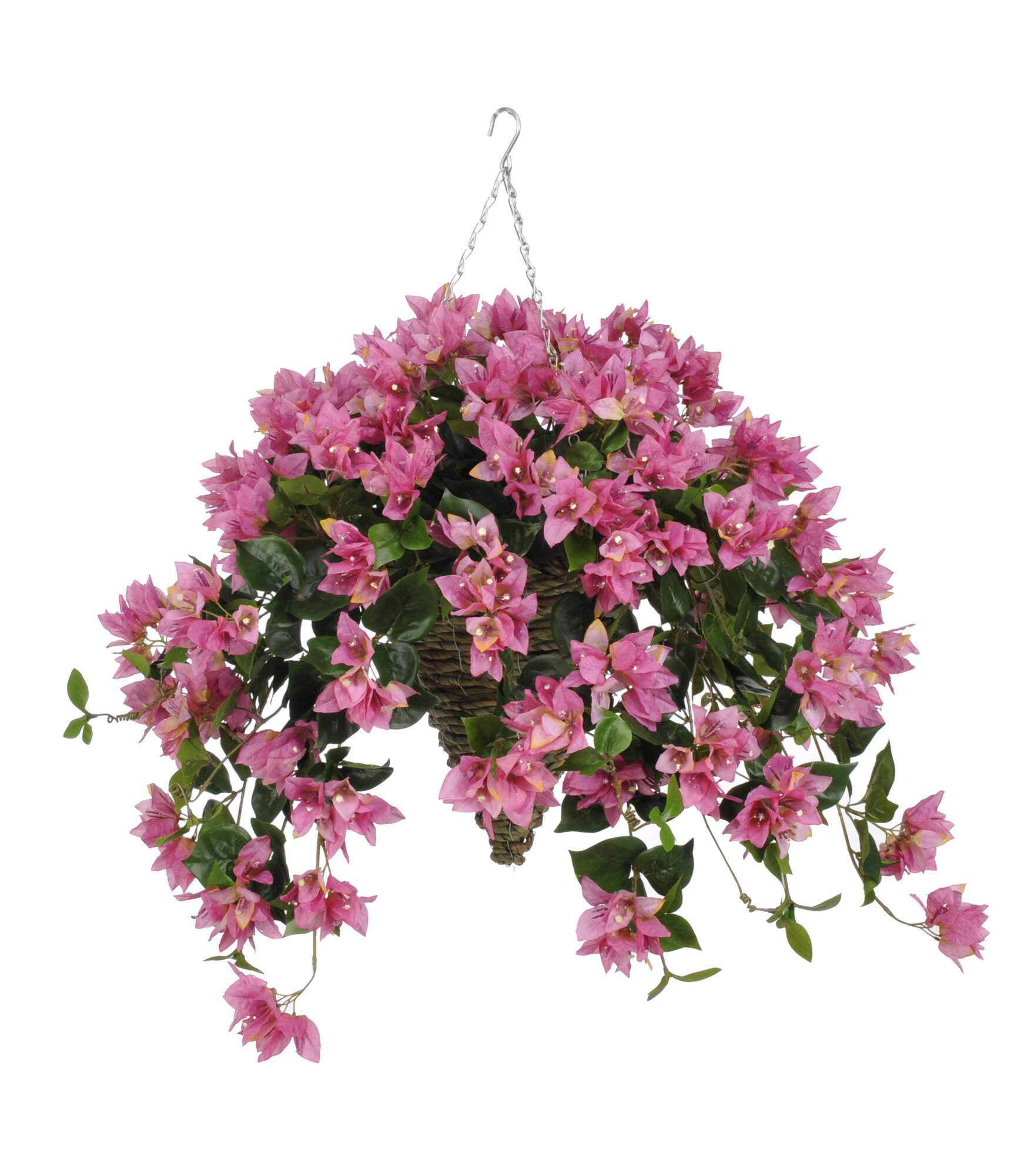 Flower Baskets Usa : Condition