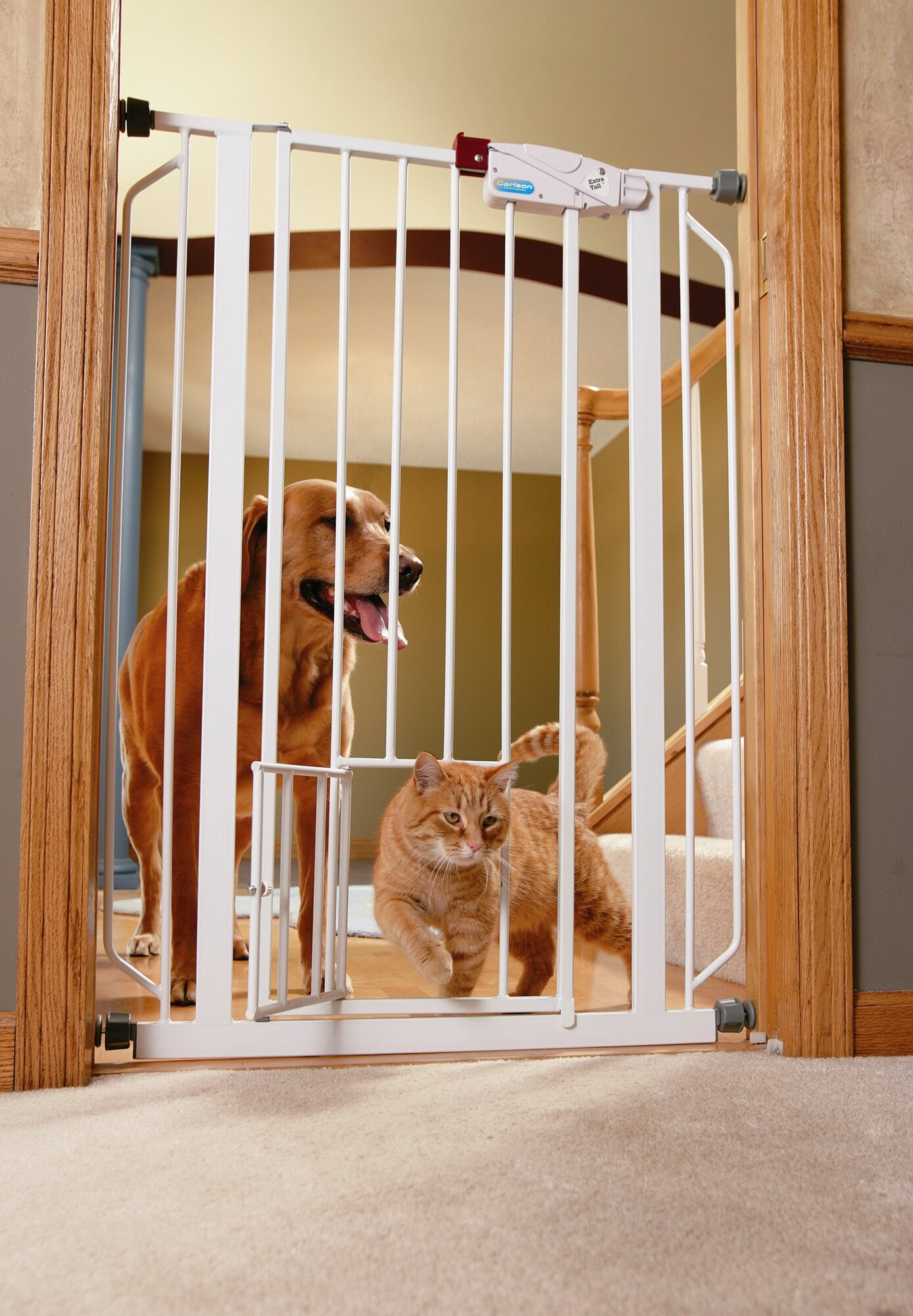 Carlson Pet Products Gate Extension for 0941PW Extra Tall Pet Gate