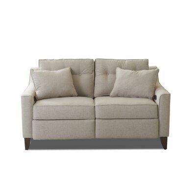 Wayfair Loveseat Reclining Sofas