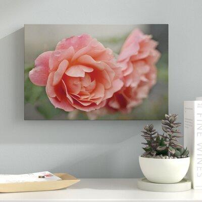 "'Cottage Climber' Photographic Art Print on Wrapped Canvas Size: 12"" H x 18"" W 8B0B7B55E6434EDFAD197633A7BC604A"