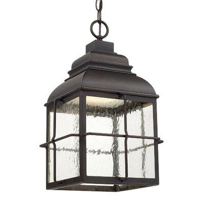 Breakwater Bay Wolton Light Outdoor Hanging Lantern Hanging Lights