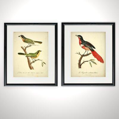 'Aviary Pair' 2 Piece Framed Acrylic Painting Print Set 62A20AA624C341F595F5A86FEB804480
