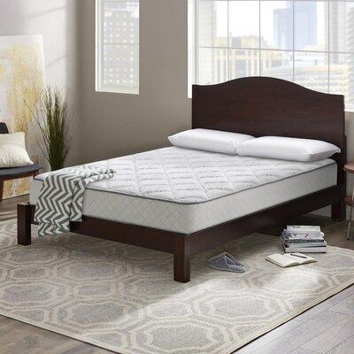 Wayfair Sleep Plush Innerspring Mattress Sleep Mattresses