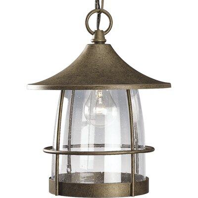 Alcott Hill Clear Hanging Lantern Light Hanging Lights