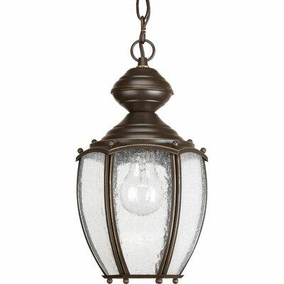 Alcott Hill Classic Hanging Lantern Light Hanging Lights